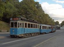 Här ses hela vårt tåg på Djurgårdsvägen